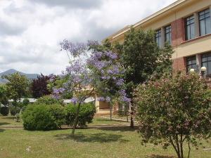 2 giardino della scuola