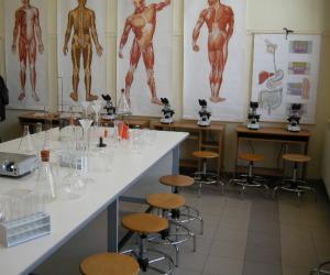 laboratorio scolastico 4